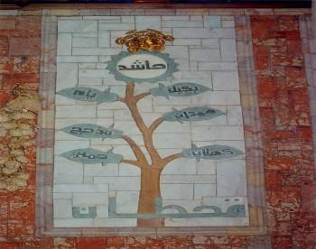 شجرة قبائل اليمن ومنها قبيلة حاشد التي تنتمي إليها قحطان