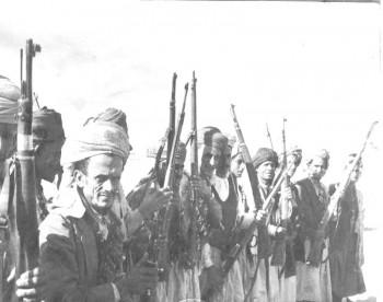 قبائل حاشد استعداد دائم للقتال مع الجمهورية ضد الملكيين 1966م وهم يعشرون بالبنادق ترحيباً بالضيف